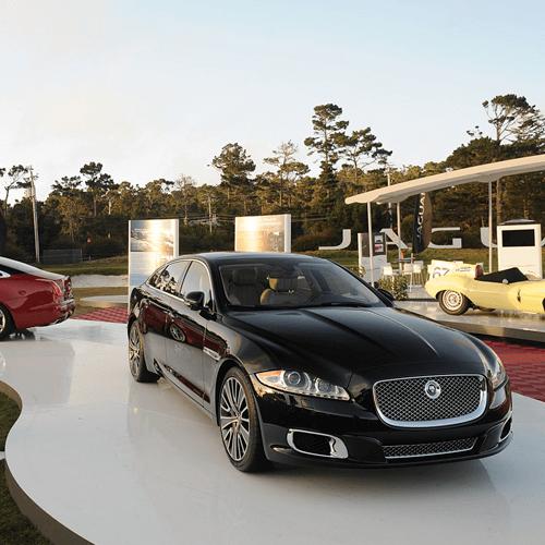 Jaguar Exhibit